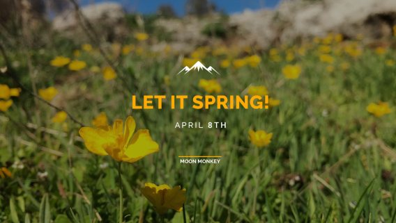 Let it Spring!