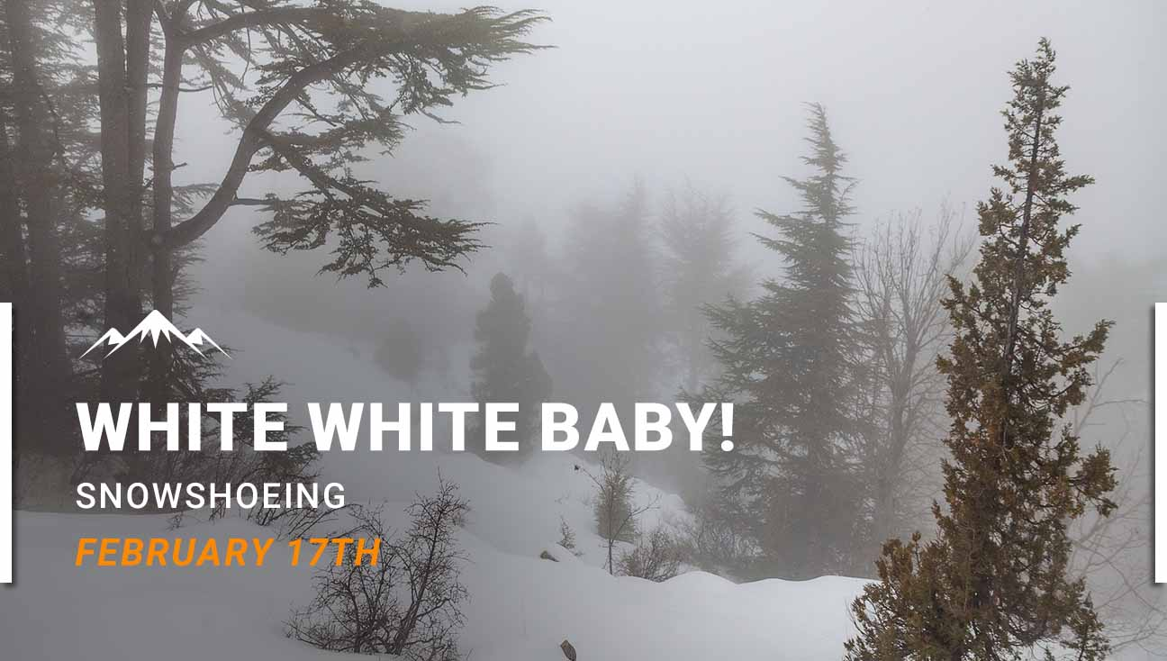 White White Baby!